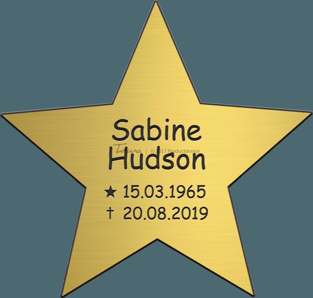 tekstplaatje goud ster